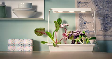 Ikea's Clever Kit Makes Indoor Farming as Easy as It'll