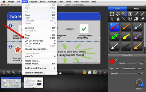 Snagit for Mac - Download Free (2019 Latest Version)