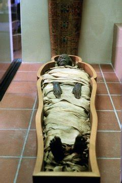 The Burial Process of Ancient Egyptian Pharaohs | Synonym