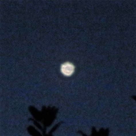 Object in the Night Sky_9384a   Flickr - Photo Sharing!