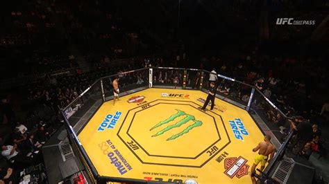 Pic: UFC 200 Octagon Canvas Turns Yellow For Special