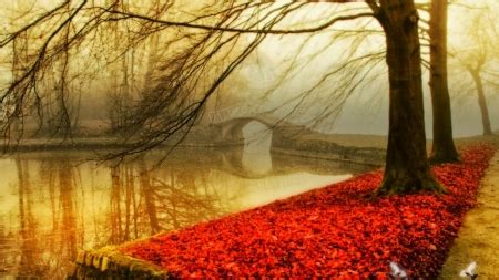 Romantic Autumn - Rivers & Nature Background Wallpapers on