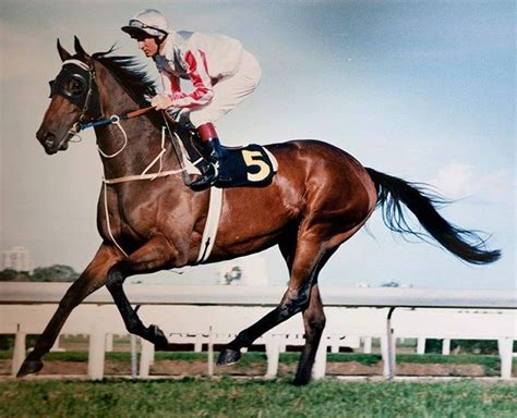 Melbourne Cup and Caulfield Cup Double Winners
